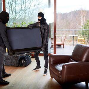 1610657370burglars-carrying-TV